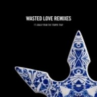 Steve Angello feat. Dougy - Wasted Love (AN21 & Sebjak Remix) (Original mix)