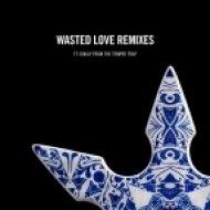 Steve Angello feat. Dougy - Wasted Love (Grum Remix) (Original mix)