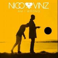 Nico & Vinz - Am I Wrong (DJ Just Remix) (DJ Just Remix)
