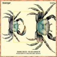 Daniel Secco - So Go Ahead (Original Mix)