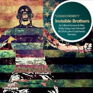 Invisible Brothers - Cosmochemistry (W.O.R.M. pres A.Galchenko Remix)