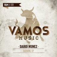 Dario Nunez - Burning Up (Original mix)