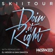 SkiiTour - Doin It Right (Dan Dakota Remix)