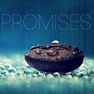 BXDN - Promises (Original mix)