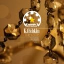 K.Oshkin - Time Loop (Vla DSound Remix)