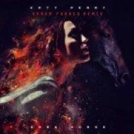 Katy Perry feat Juicy J - Dark Horse (Sasha Forbes Remix)