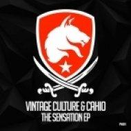 Vintage Culture - Exposed (Original Mix)