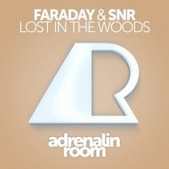 SNR, Faraday - Lost In The Woods (Original Mix)