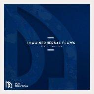 Imagined Herbal Flows  - Breeze (Original mix)