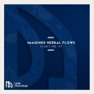 Imagined Herbal Flows feat. Cyn - Waves (Original mix)