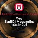 Chardy Stevie Mink & David Guetta & Showtek feat. Vassy - Yoo Bad  (Dj Megamiks mash-up)