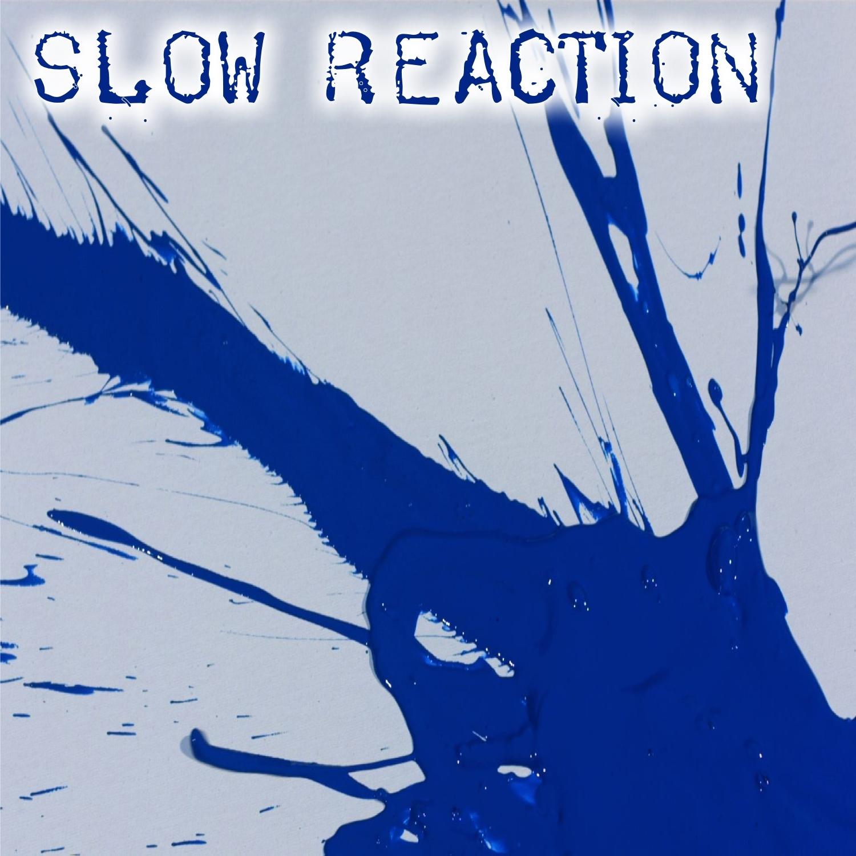 Paul von Lecter - Slow Reaction (Original mix)