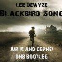 Lee DeWyze - Blackbird Song (Air.K & Cephei DnB Bootleg)
