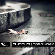 Sygnus - Something Is Missing (Original Mix)