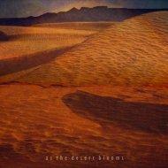 Brombaer & Fljóta - As the Desert Blooms (Original mix)