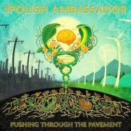 The Polish Ambassador ft. Saqi - The Juiceman Cometh (Original mix)
