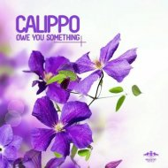 Calippo - Owe You Something (Me & My Toothbrush Remix)
