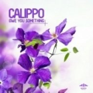 Calippo - How\'s Your Body (Original Mix)
