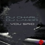 DJ Charl & DJ Lamor - You Said (Original Mix)