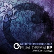 Need For Mirrors & HLZ - Pinch (Original mix)