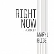 Mary J. Blige - Right Now (Zed Bias Remix)