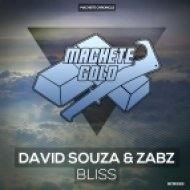 David Souza & Zabz - Bliss (Original mix)