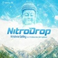 NitroDrop & Syllabass - Krishna Valley (Original Mix)