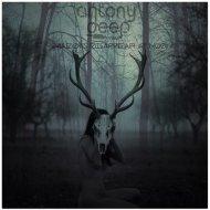 Antony Deep - Shadows Disappear At Noon (Original mix)