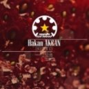 Hakan Akcan - Begining (Vla DSound Remix)