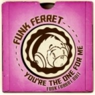 D Train - You\'re The One For Me (Funk Ferret Edit)