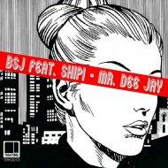 BSJ, Shipi - Mr. Dee Jay (Original Mix)