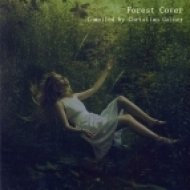 Christian Gainer - Forest Cover Vol.4 ()