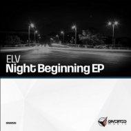 ELV - Night Feeling Egypt (Original Mix)