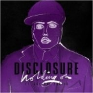 Disclosure - Holding On (feat. Gregory Porter)