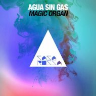 Agua Sin Gas - Magic Organ (Original Mix)