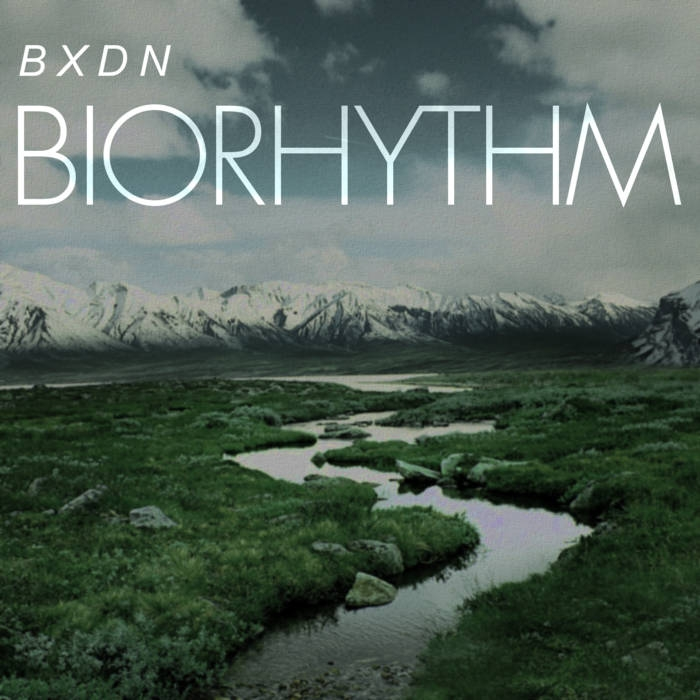 BXDN - BioRhythm (Original mix)