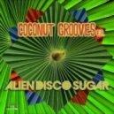 Alien Disco Sugar - Feelin\' Good (Original Mix)