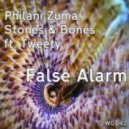 Philani Zuma, Stones & Bones feat. Tweety - False Alarm (Zuma\'s Afro Intentions)