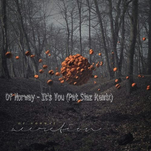 Of Norway feat. Lois - Its You (Pat Siaz Remix)
