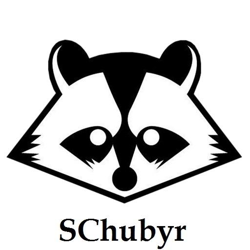 SChubyr - Луч (Original mix)