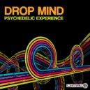 Drop Mind - Psychedelic Experience (Original Mix)