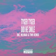 Tyger Tyger - Did He Smile (Original Mix)