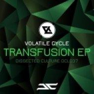 Volatile Cycle - Keep Steppin (Original mix)