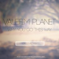 Valefim Planet - Why You Go This Way (Original Mix)