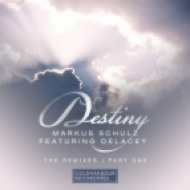 Markus Schulz, Delacey  - Destiny (Art Alive Remix)