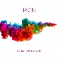 Ricin - Now Or Never (Original Mix)