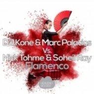Nick Tohme, Marc Palacios, DJ Kone, Soheil Ray - Flamenco (Original Mix)