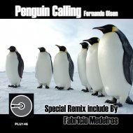 Fernando Olsen - Penguin Calling (Original Mix)