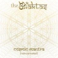 The Bhaktas - Pitr Purusebhyo Namah (Original mix)