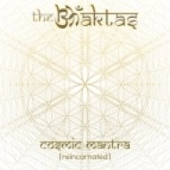 The Bhaktas feat. Krishna Das & Jai Uttal - Hare Krishna (Original mix)